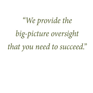 We provide the 'big picture' oversight that you need to succeed.